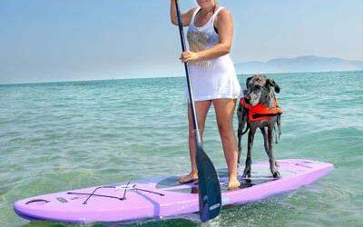 Paddle Boarding on Bear Lake